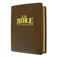 BIBLE THOMPSON COLOMBE LUXE SOUPLE MARRON TR OR