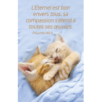 CALENDRIER EPT CARTE CALENDRIER CHAT