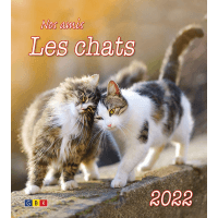 CALENDRIER GBK NOS AMIS LES CHATS - MURAL